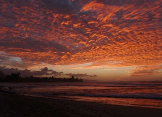 Em breve, o tsunami irá passar e juntos voltaremos a surfar tranquilamente. Foto: Antônio Zanella.